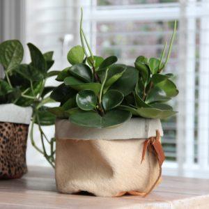 leren plantenmandje naturel 1