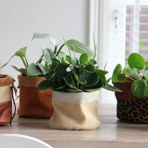 leren plantenmandje naturel