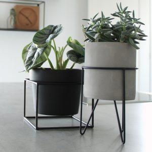 plantenstandaard met betonnen potje