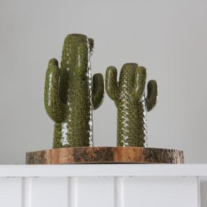 cactusvaasje